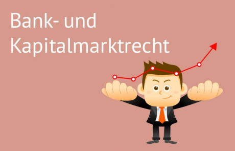 graf_kategorien_bank-kapitalmarkt